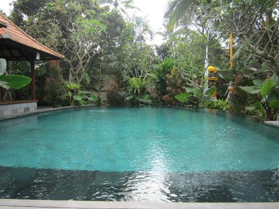 Pool Area Picture Of Bayad Ubud Bali Villa Payangan Tripadvisor