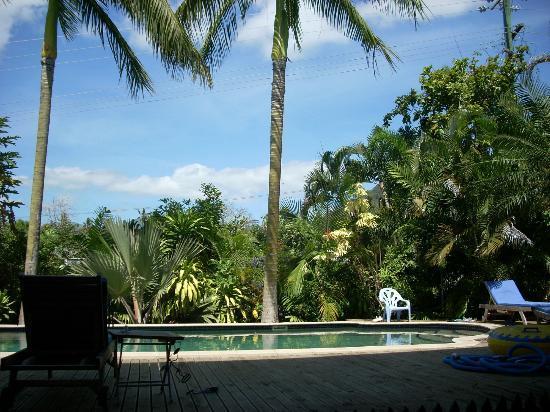 Lynn's Getaway Hotel: Pool 
