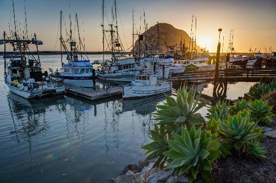 ‪بيتش بنجالو إن آند سويتس: Morro Bay sunset. Just a few blocks walk from the motel.