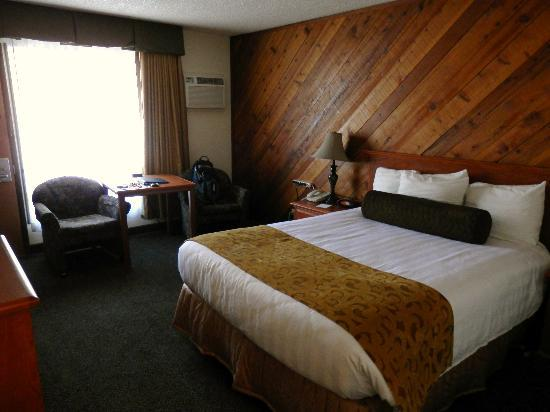 Best Western Plus Tree House: King sized bed, very comfy!