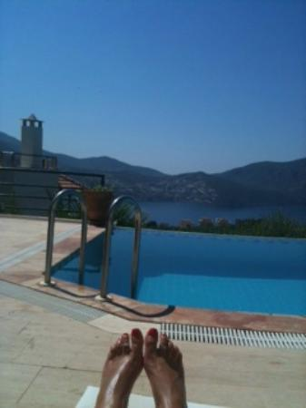 Villa Pisces : View from my sunbed. It doesn't get much better than this!