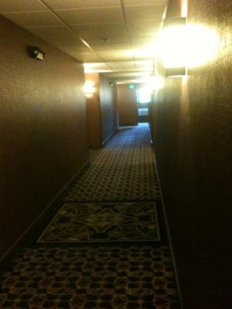 Comfort Inn and Suites Lincoln City : Hallways