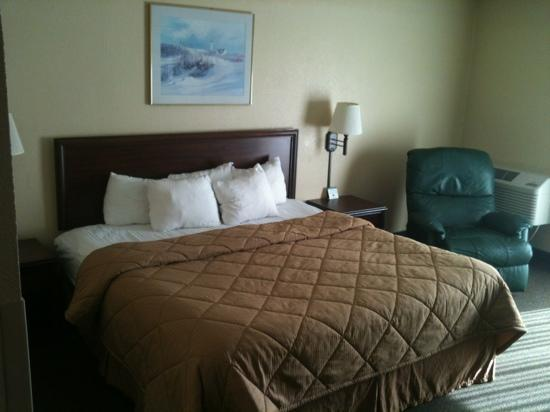 Comfort Inn and Suites Lincoln City : king bed