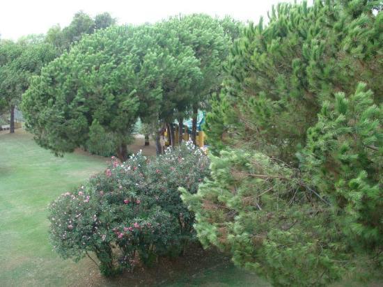 Residenza Alberghiera Italia : Otoczenie