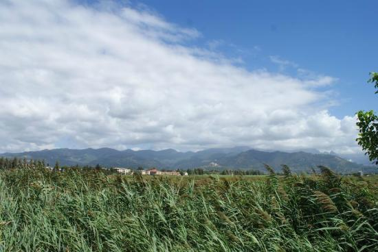 Residenza Alberghiera Italia : Z daleka