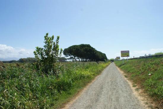Residenza Alberghiera Italia : Droga na plazę