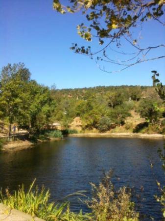 Domaine de la Bergerie : le petit étang