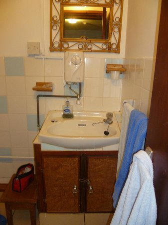 Chestnut Farm Bed & Breakfast: bathroom