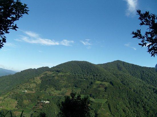 Lalashan Happy Farm: Hillside scenery from Happy Farm.