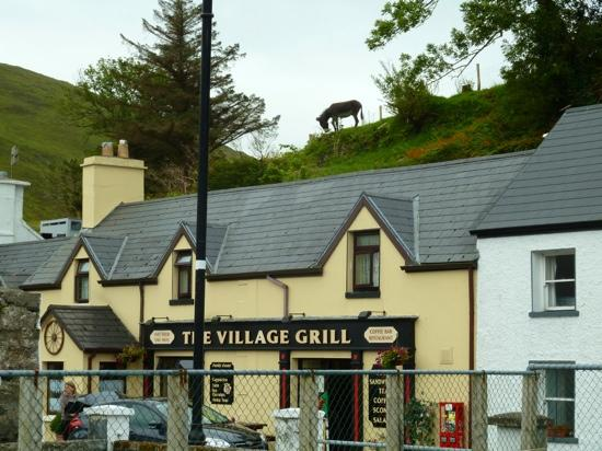 The Sheep and Wool Centre: Donkey watching over the town.