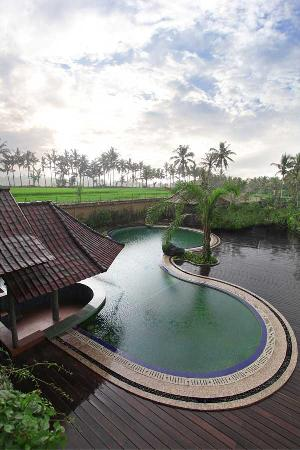 Bhuwana Ubud Hotel: Swimming Pool