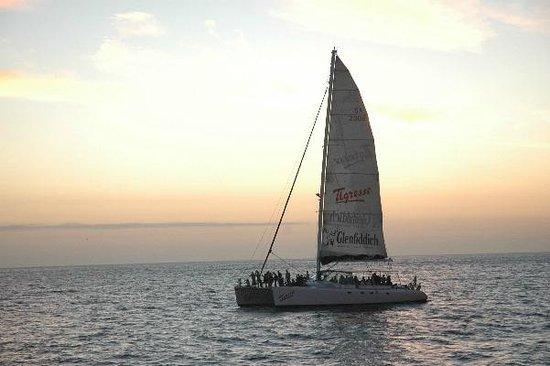 Tigresse Catamaran