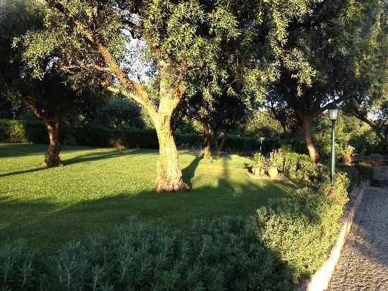 Quinta d'Arroteia: Jardins muito bem cuidados