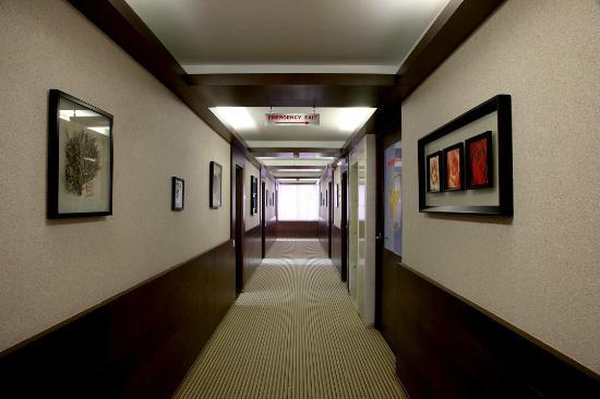 Hotel Nami Residency : floor corridor