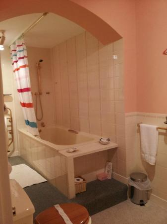 Vicarsford Lodge: very spacious well equipped clean bathroom