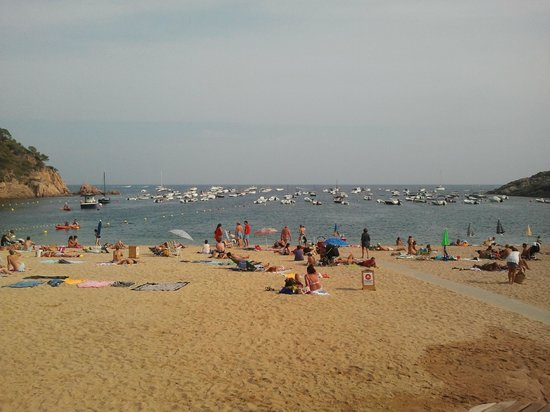 Hotel La Caleta de Tamariu: La playa inmejorable
