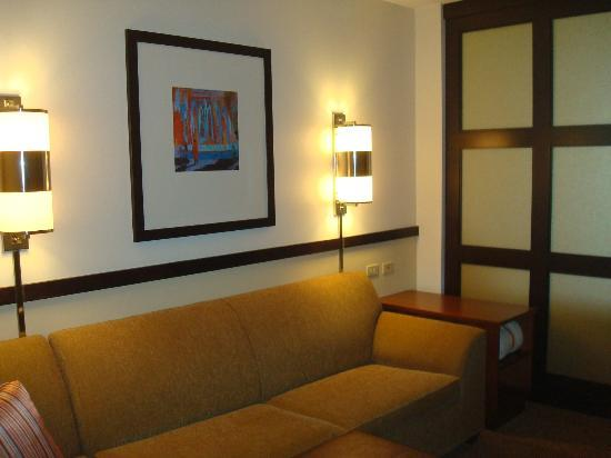 Hyatt Place Grand Rapids-South: Part of the gorgeous room!