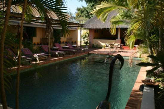 Amadeus Garden: Pool