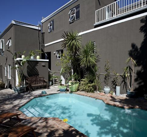 The Backpackers in Green Point: Swimming Pool