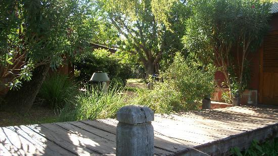 Camping Municipal Ibera: Parque y muelle