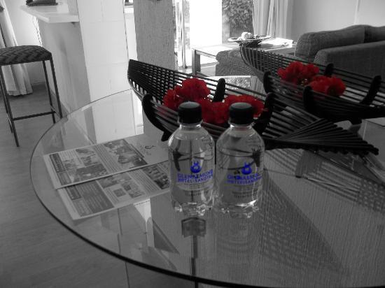 Glenalmond Hotel Sandton: Glenalmond Water