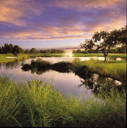 Belleview Biltmore Golf Club: sunset on the 18th hole