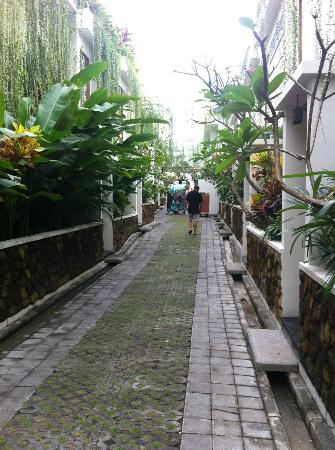 Villa Kayu Raja: Leading to villas