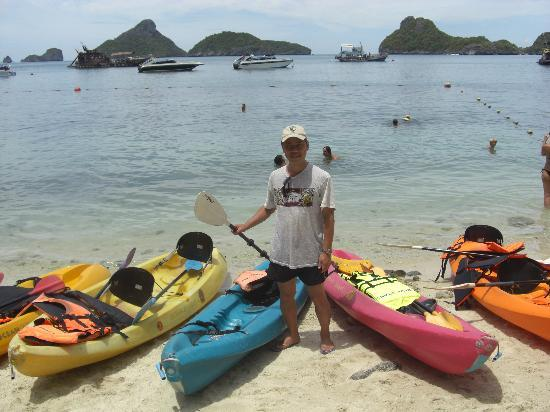 Blue Stars Kayaking : シーカヤックは楽しいですよ