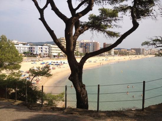 Hotel Reimar: vue de l'hôtel sur la baie