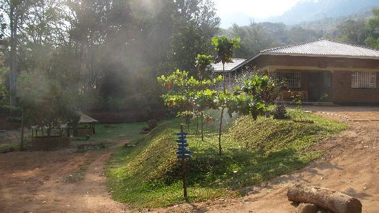 Pakachere Backpackers & Creative Centre: Building and Garden