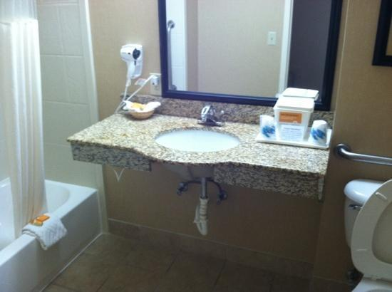 La Quinta Inn & Suites Dalton: Accessable bath in this room.