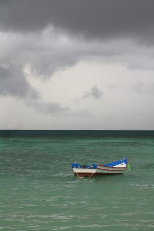 Salad Beach: arriva la tempesta