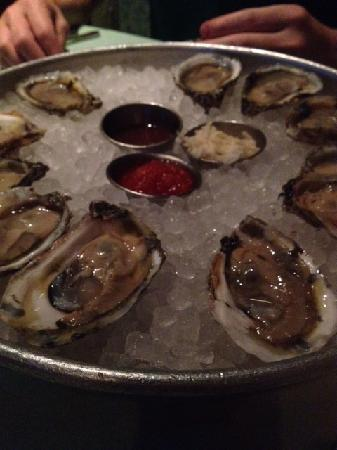 REEF: oysters
