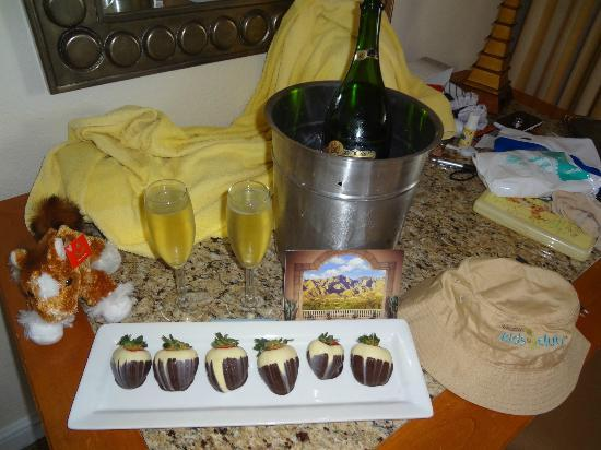 The Westin La Paloma Resort & Spa: Nice gift from the Westin Staff