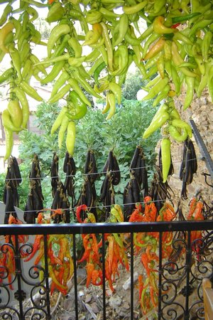 Sirince, Turkiet: Drying peppers at the restaurant