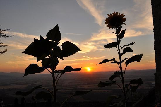 Il Frantoio : il nostro tramonto....