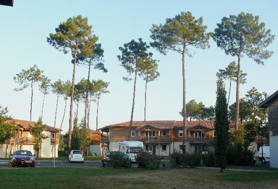Les Cottages du Lac : Vue depuis l'appartement