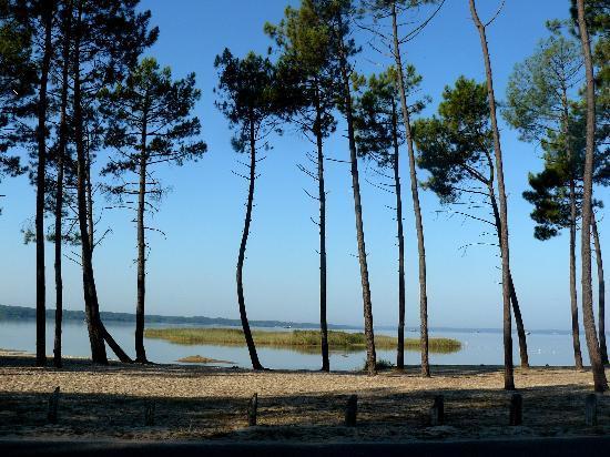 Les Cottages du Lac: La plage