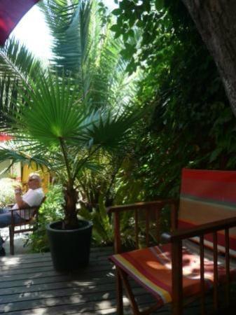 jardin picture of hotel des arceaux montpellier