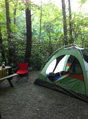Mama Gertie's Hideaway Campground: my campsite