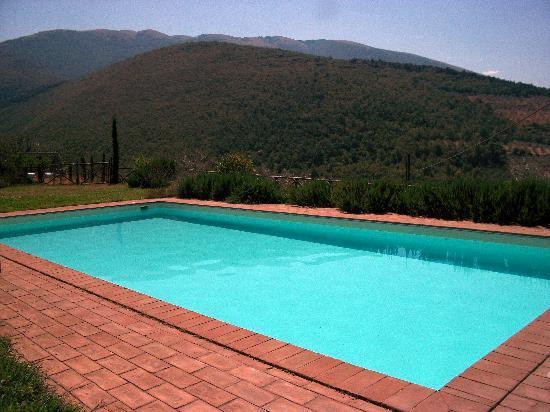 La Pintura Agriturismo: La piscina dell'agriturismo.