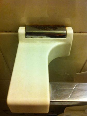 Hotel Vienna: rusty towel rail