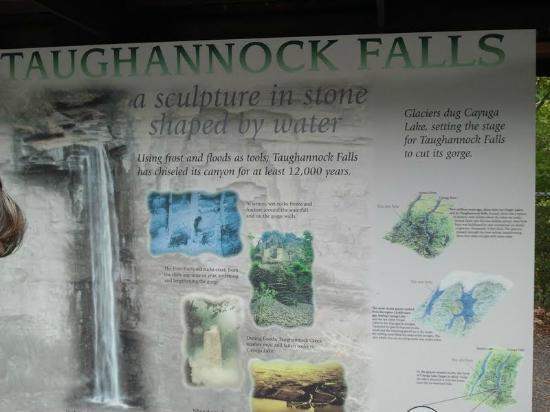Taughannock Falls State Park: Local Map of the Park