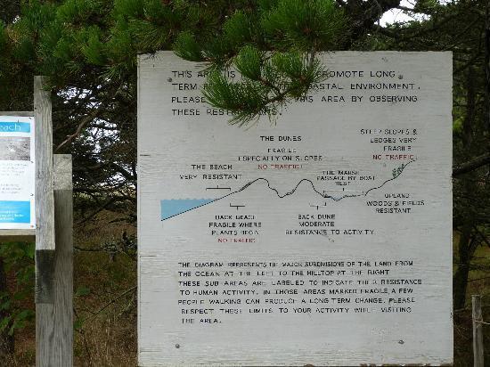 Bates-Morse Mountain Conservation Area: beach explanation