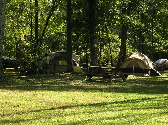 Copake KOA: Tent Sites!