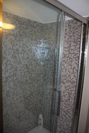 Elda Country House: shower
