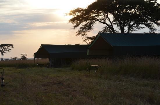 Kampi Kampi Serengeti : tents