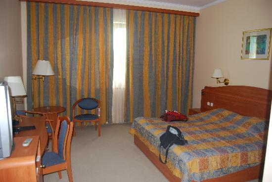 Hotel Samarkand Plaza: Habitación