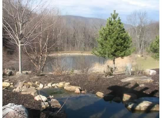 House Mountain Inn: View of the pond on the grounds