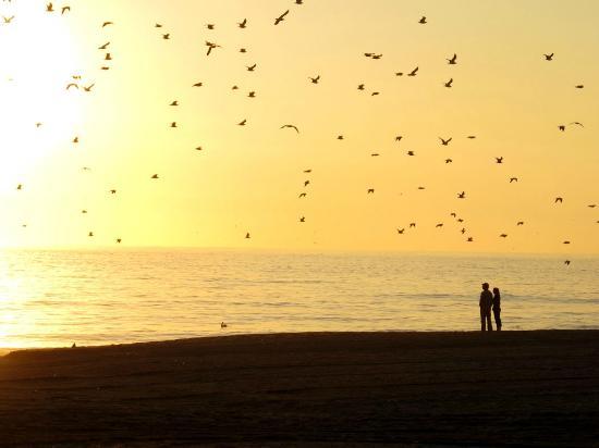 Sunset on Westward Beach